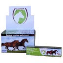 No Stress Paste Horse injector